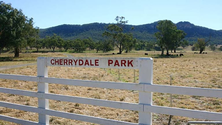 Cherrydale Park with Mt Penny, which is the site of exploratory coal drilling, in background.