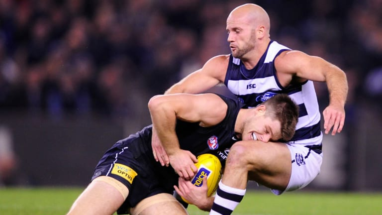 Wrestlemania: Cat Paul Chapman and Bryce Gibbs come to grips.