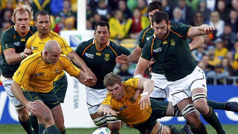 Star performer ... David Pocock, centre, fights for the ball against South Africa during his supreme performance in the World Cup quarter-final.