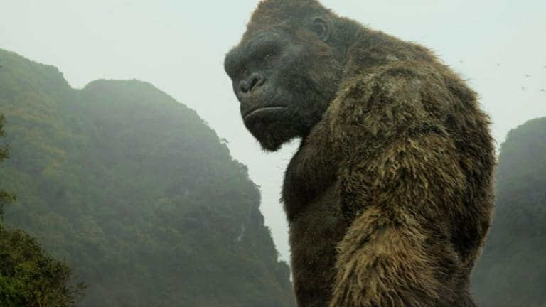 Thoughtful brute: King Kong considers his next move in the fun, throwaway spectacle Kong: Skull Island.