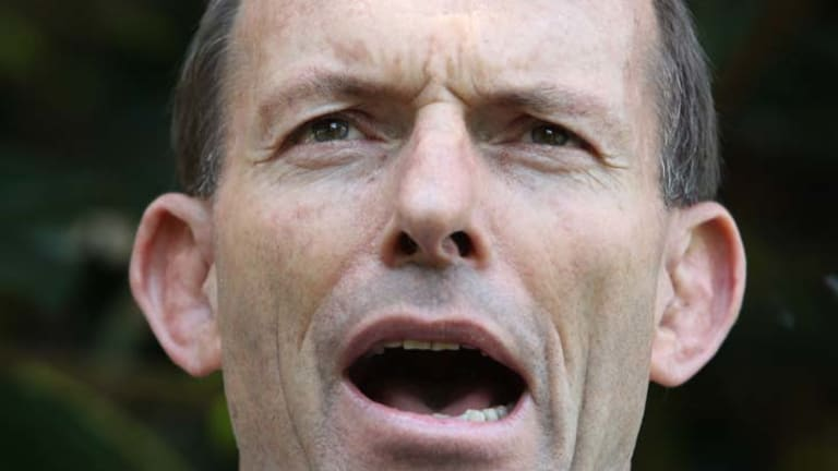 Under fire ... tensions have been building within the Coalition over the behaviour of the Nationals.