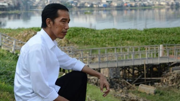 Focused: Indonesian President-elect Joko Widodo.