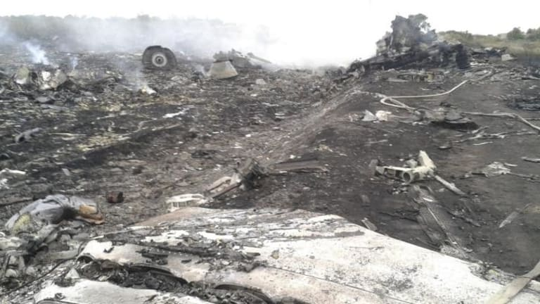 The site of the Malaysia Airlines Boeing 777 plane crash in the settlement of Grabovo in the Donetsk region.