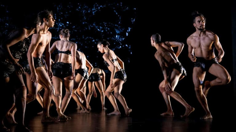The ensemble of Bangarra Dance Theatre's <i>Blak</i>.
