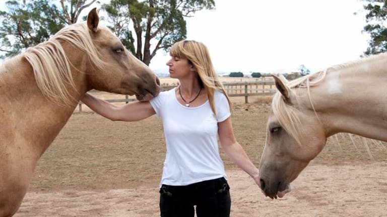 Equine psychotherapist Meggin Kirby says horses help people with mental health issues to express themselves.