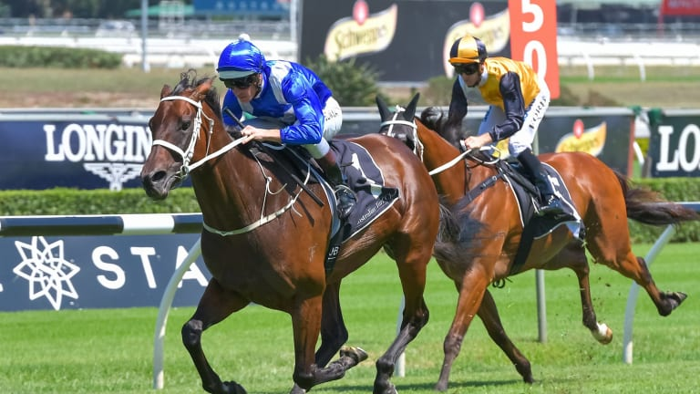 Hugh Bowman puts Winx through her paces at Randwick on Saturday.