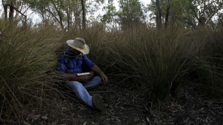 In waiting: Grazier and protester Ted Borowski lies in a dry creek bed ready to disrupt drilling operations in the Pilliga forest by locking himself to a truck.