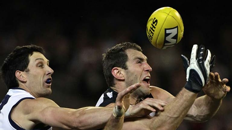 In round 24, Harry Taylor kept Travis Cloke goalless for only the second time this season.