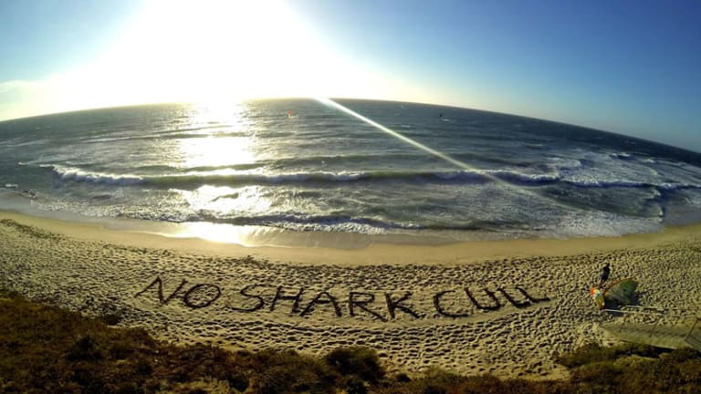An anti-shark cull message left by protesters on a Perth beach.