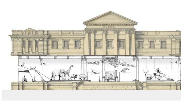 Artist's impression of the Wild Planet Gallery at the Australian Museum.