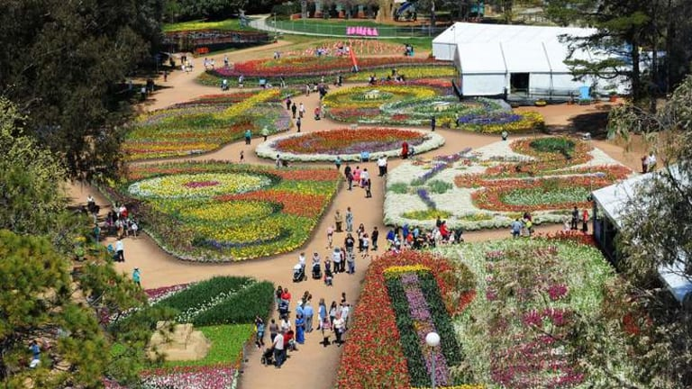 Floriade is a big moneyspinner for the ACT, but its pull as a tourist attraction is on the wane.