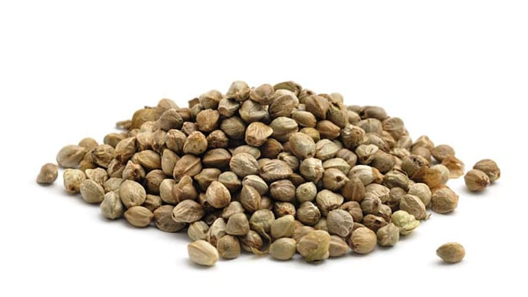Protein source: humble hemp seeds won't make you stoned.