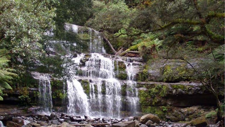 Liffey Falls in Tasmania.