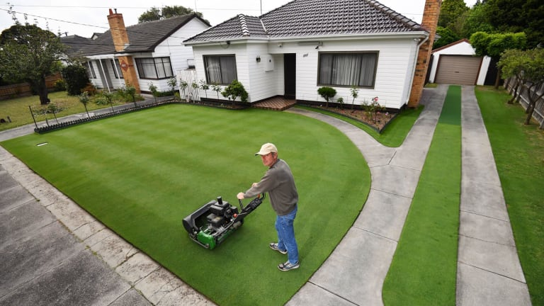Lawn Envy: Is This Australia's Perfect Lawn?
