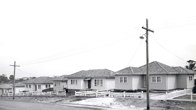 A housing development in the 1950s, typical of the style of housing commission homes built in this period.