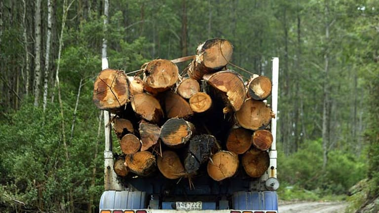 VicForests has rejected damning analysis and claims it delivered overall profits since 2004.
