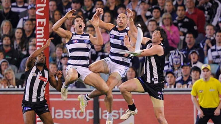 Screamer: Geelong's Daniel Menzel (second from left) proved his worth as he and teammate James Podsiadly fly high over Magpies Harry O'Brien (left) and Leigh Brown.