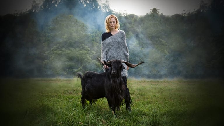 The Age, Spectrum. Goats. Models Kepsibel from Chadwicks and Pedro the goat from Justine and Anthony Merry. Shot in the foothills of the Dandenongs Victoria. Pic Simon Schluter 25 January 2015.