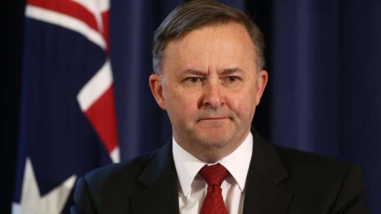 Anthony Albanese is Labor's alternative leader.