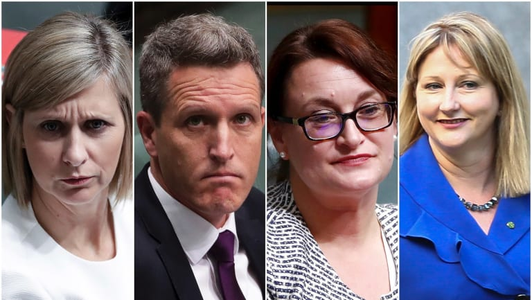 Susan Lamb, Josh Wilson, Justine Keay and Rebekha Sharkie all announced their resignations from Parliament on Wednesday. They will contest byelections in their electorates.