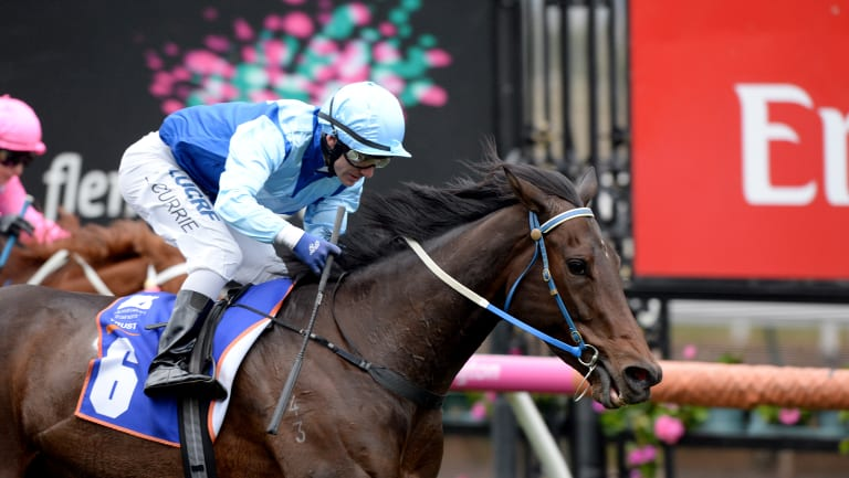 Sport of kings: The horse at the centre of  the Aquanita scandal, Lovani, wins at Flemington in 2017.
