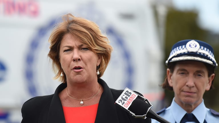 Roads minister Melinda Pavey  has called for support for new reforms that allow reformed drivers to get their licences back.