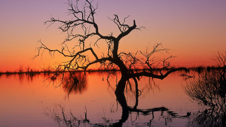 Reflections in Lake Menindee at sunset in the Kinchega National Park.