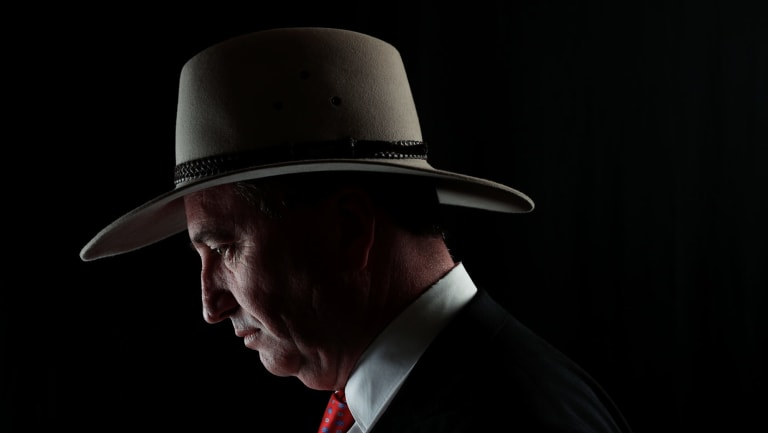 Former deputy prime minister Barnaby Joyce has rejected the allegations as spurious and defamatory.