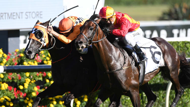 Drive to the line: Levendi gets the bob in from Ace High to win the Australian Derby.