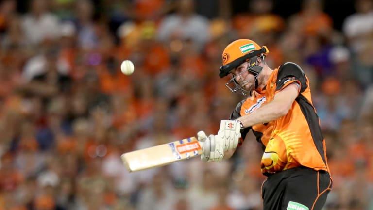 Under lights: A new specialist Twenty20 ball is being trialled.