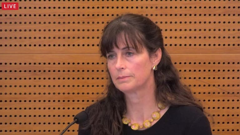 ASIC\'s Louise Macaulay at the royal commission on Friday.