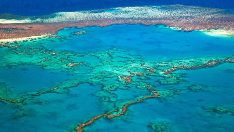 There are fears the changes to Coral Sea protections will affect the nearby Great Barrier Reef.