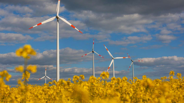 Germany's rush to renewables let energy efficiency measures fall - to a degree - by the wayside.