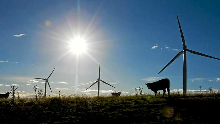 Large scale wind farms will become more common in Australia.