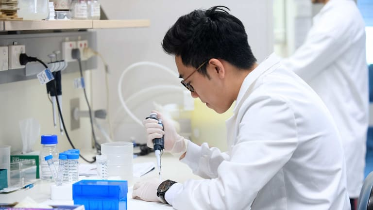 A scientist works in a lab at the Victor Chang Cardiac Research Institute in Sydney.
