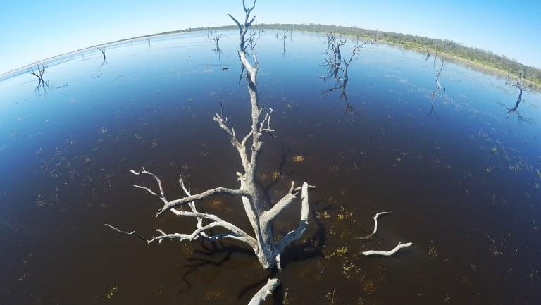 Lake Menindee in far west NSW in November 2016.