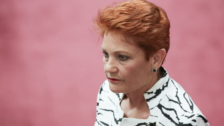 Senator Pauline Hanson has backflipped on her support for the government's company tax plan.
