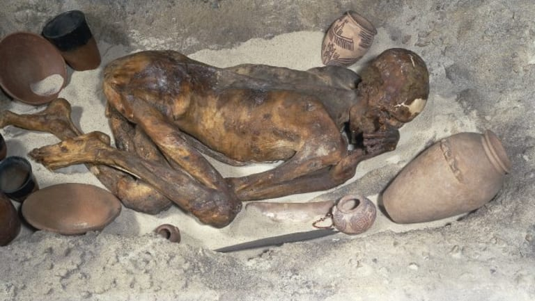 Gebelein Man mummy. Recent research has found tattoos on the skin of the museum's oldest resident.