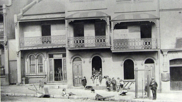 Terraces on Foveaux Street in Surry Hills, where Lillian Armfield patrolled.