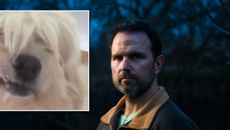 Drago Gvozdanovic, pictured, and his dog, Izzy, that went missing but DAS forced a vet to euthanise it only 24 hours later, despite the policy being 7 days.