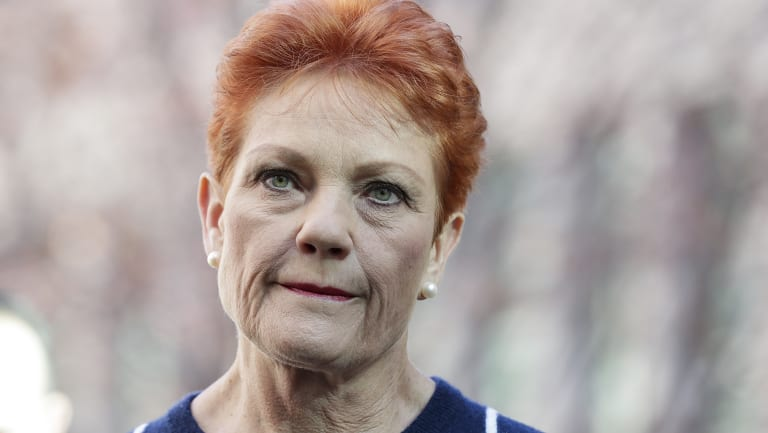 One Nation senator Pauline Hanson at a press conference on Thursday.