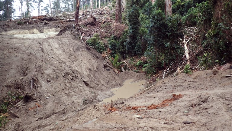 Logging activity at Serpentine Creek, near Cann River in East Gippsland.