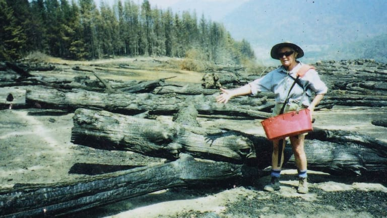 One of the original Gudgenby bushies, the late Eleanor Stodart, pictured sowing seed in a section of felled and burnt pine forest.