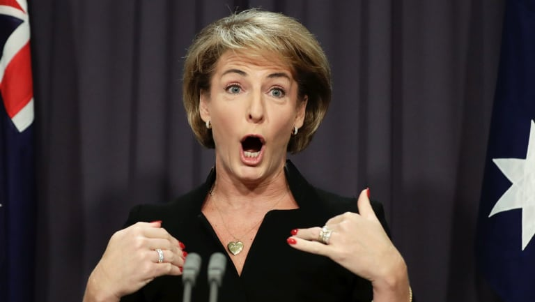Minister for Jobs and Innovation Michaelia Cash addresses the media on Wednesday.