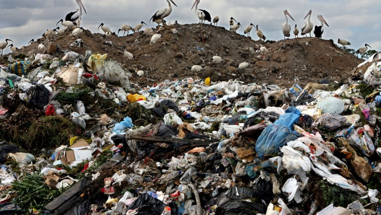 Garbage could be a new energy source for EnergyAustralia.