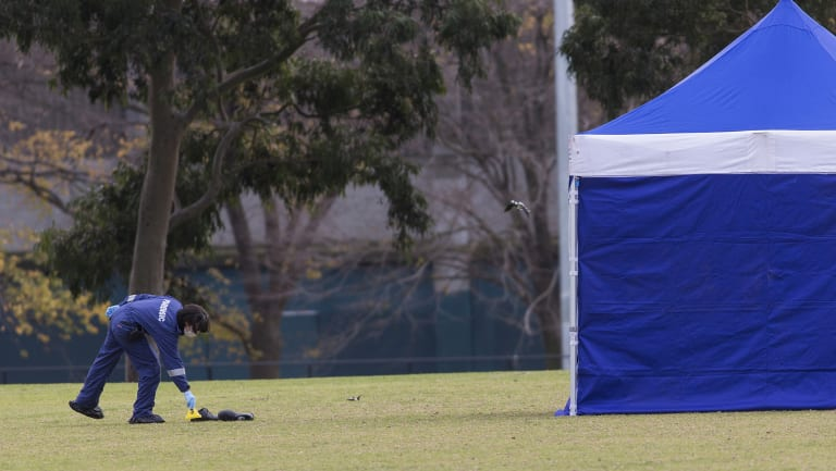 Black shoes were found in the middle of the pitch, not far from the woman's body.
