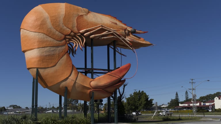 The Big Prawn, in happier days.