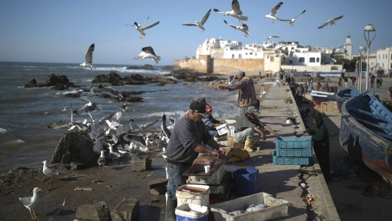 Fishermen prepare their goods for customers in the port city of Essaouira, Morocco. The country is facing an increase of Europe-bound migrant traffic.