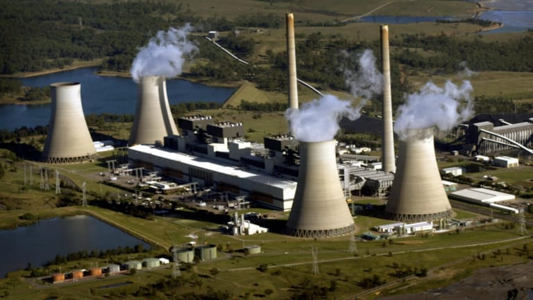 Bayswater power station in the Hunter, one of the state's five coal-fired plants.