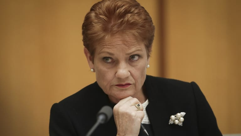 Senator Pauline Hanson during an estimates hearing at Parliament House